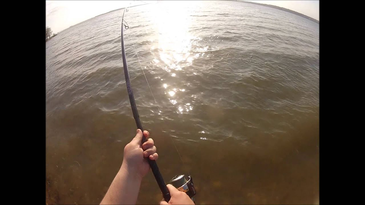 Delaware river striped bass fishing from shore youtube for Delaware river striper fishing