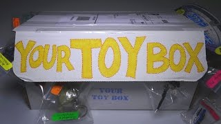 Opening: Your Toy Box SUBSCRIPTION BOX! #7