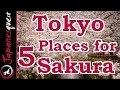 Lagu Top 5 Places to See Sakura (Cherry Blossoms) in Tokyo!
