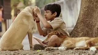 Tare Zamin Par Full Movie In Malayalam Subtitles