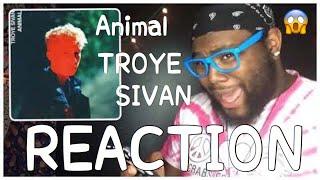 Troye Sivan Animal Official Audio Reaction