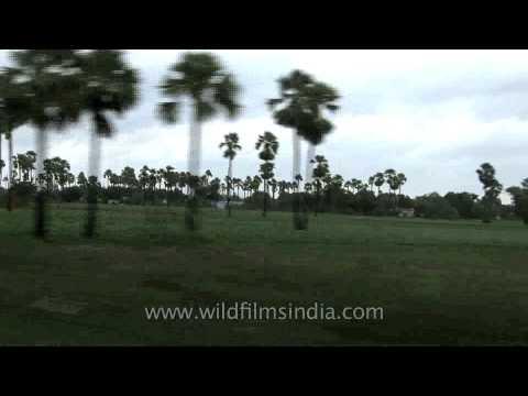 Delhi To Kerala Train Journey video