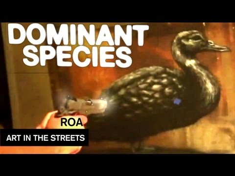 dominant-species-by-roa-art-in-the-streets-mocatv-ep-8.html