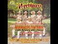 Huapangos MIX Hechizero De Linares (El Brinquito de La Perrita Roñosa, El Toro Josco y Mas)