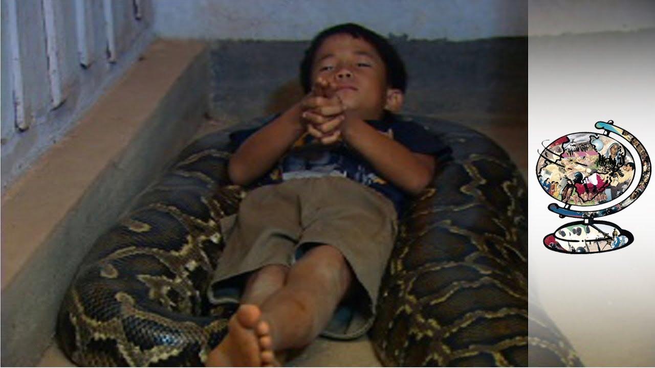Were Burmese python with nude girl