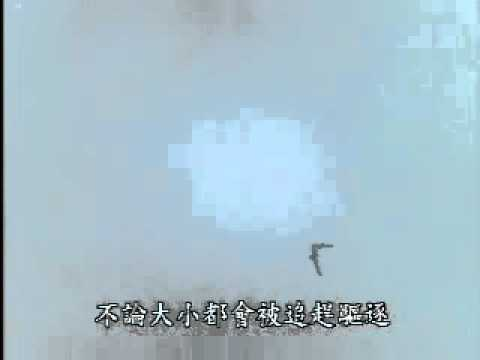 【陽明山國家公園管理處】草山鷹飛-松雀鷹領域性