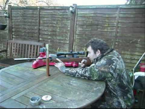 shooting my custom gamo shadowmatic air rifle