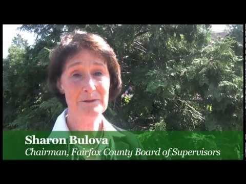Sharon Bulova
