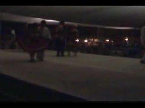 Final adultos Concurso de huapango Pinal de Amoles 2008