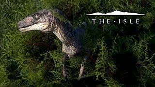 Sprinkles The Utahraptor - The Isle