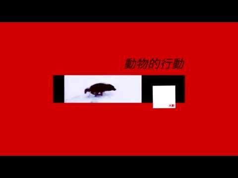 CRXSH - ANIMALISTIC BEHAVIOUR / 動物的行動 (Instrumental)