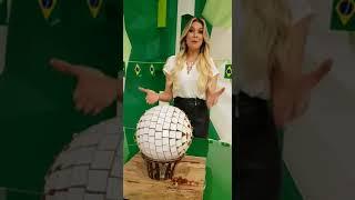 Bola Colorada - Ball Art - Ação Social - Homenagem à Renata Fan
