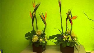 Green Cymbidium Orchid Centerpieces Image Collection Flower Ideas