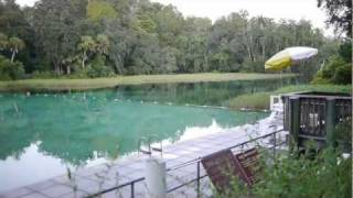 Welcome to Rainbow Springs, Dunnellon, Florida