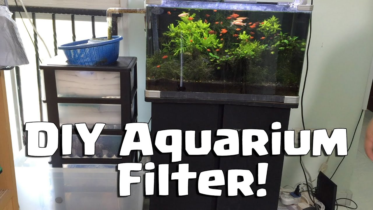 Diy water filter for aquarium do it yourself youtube for Fish filter system