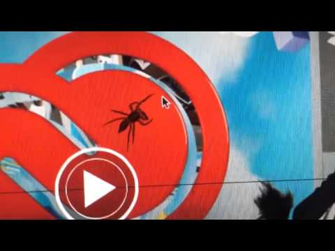 [A Hungry Spider Wants to Make a Meal Out of a Cursor!] Video