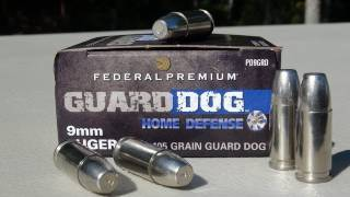 Federal Guard Dog 9mm 105 gr EFMJ AMMO TEST