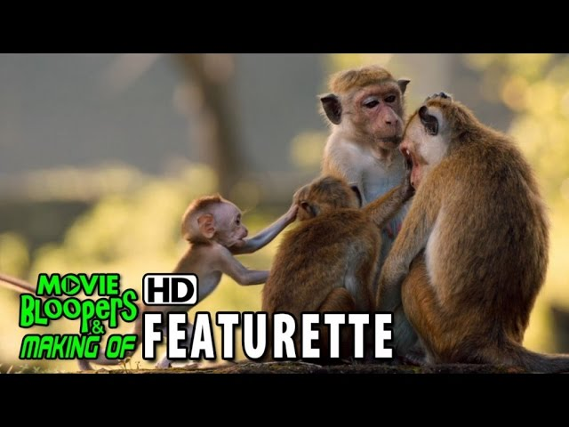 Monkey Kingdom (2015) Featurette - Making Of