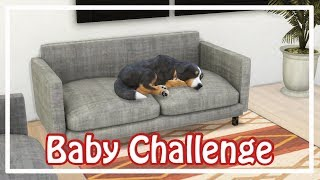 Sims 4 \\ 100 Baby Challenge \\ Hectic Toddlers Casey and Maci