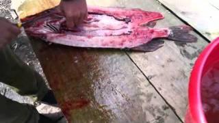 разделка рыбы щуки на холодное копчение. cutting fish fillet pike