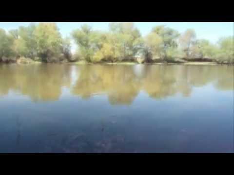 весенняя рыбалка на волге в астрахани