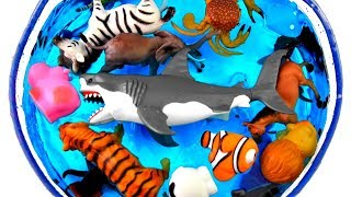 Lots of Wild Animals Learn Colors for Kids Safari Ocean Sea Animals for Children
