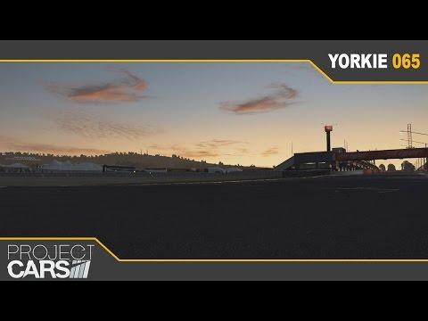 Yorkie065