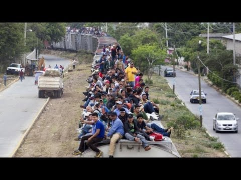 ILLEGAL IMMIGRATION: THE FINAL NAIL IN THE COFFIN