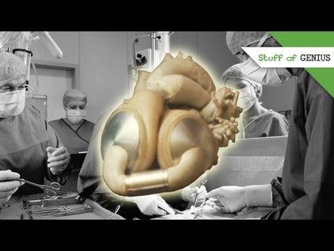 Robert Jarvik and the Artificial Heart