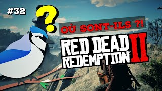 #32 GEAI BLEU : OÙ LES CHASSER ? RED DEAD REDEMPTION 2