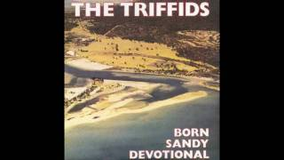 Watch Triffids Personal Things video