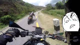 Crazy NS rider chase !!!! WILDBEASTS RIDE