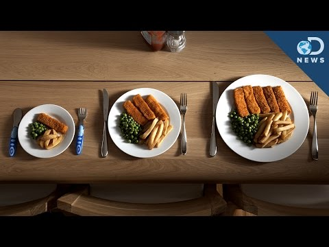 The Reason Portion Size REALLY Matters! klip izle