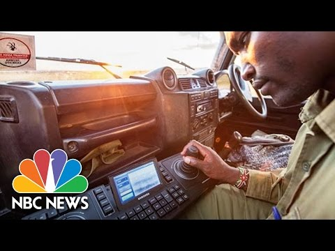 Rangers Catch Poachers In Africa Using New Night Vision Technology | NBC News