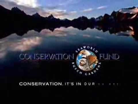 Our Commitment to Conservation | Busch Gardens® Williamsburg VA