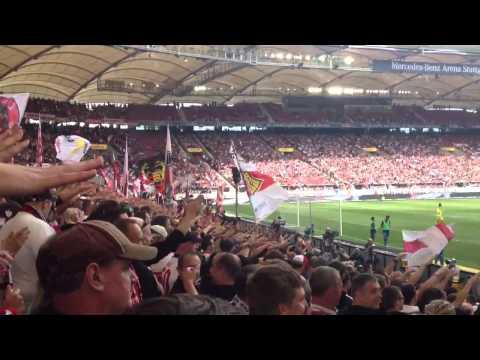 VfB Stuttgart - TSG Hoffenheim 6:2 01.09.2013 Torjubel (6:1 Ibisevic)