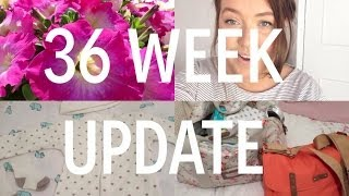 PREGNANCY VLOG 17- 36 Week Update