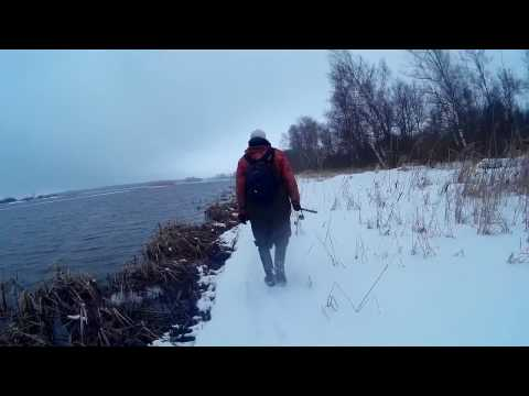 рыбалка в волгореченске канал