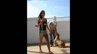 Cachorro resgatado com medo