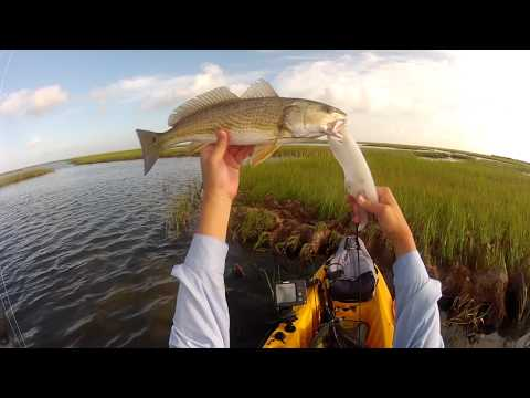 Redfish Dawn - Kayak Fishing for Saltwater Game Fish