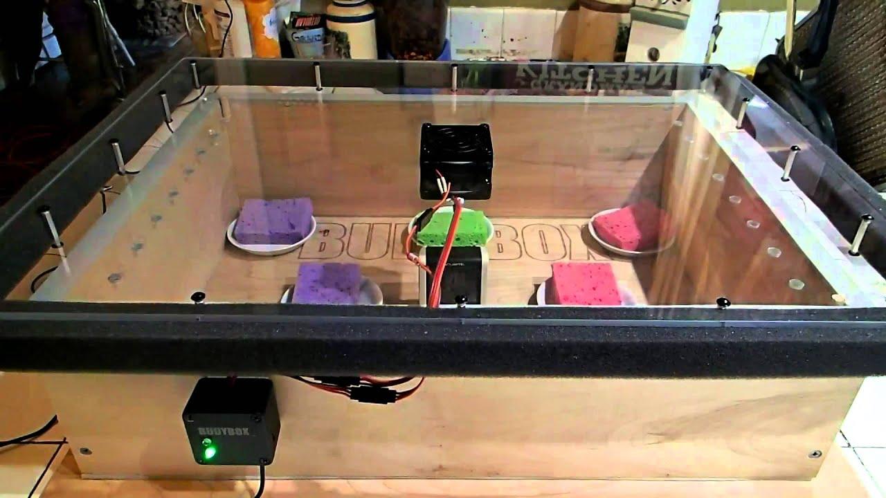 Clay Drying Cabinets ~ Budybox marijuana dryer curing box youtube