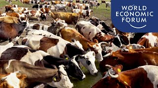 Video: Changing our Food and Diet would help reduce carbon emissions - World Economic Forum