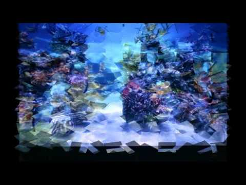 Relaxing 3D fish display,water,sounds & Whale call,neon,reflections,aquarium,