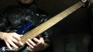 Butterfly / Perfume  Intro Bass Cover
