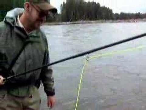 Guided Steelhead Spey fly fishing Skeena River Terrace BC