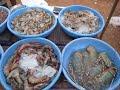 Лобстеры, креветки и другие твари на рыбном рынке на ГОА