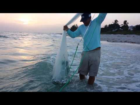 Castnetting live bait on Sanibel Island with Peter Miller Fishing