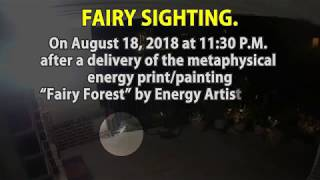 Authentic Fairy Sighting Captured On Security Camera