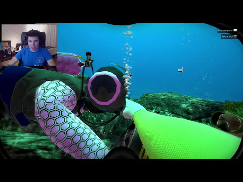 EL SECRETO MARINO!! World Of Diving
