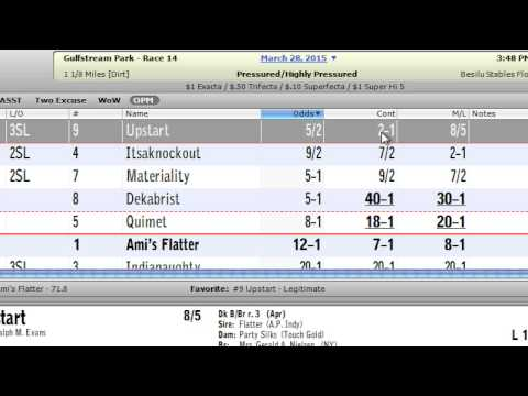 Michael Pizzolla's Rant: 2015 Florida/Louisiana Derby
